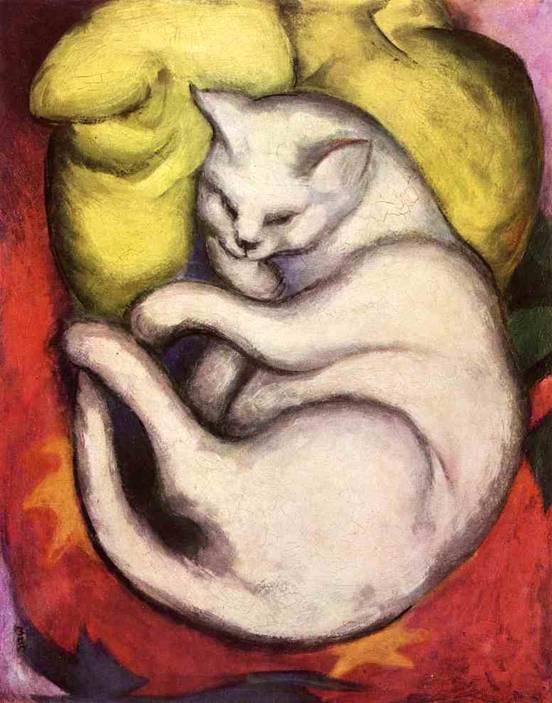 Кот на желтой подушке