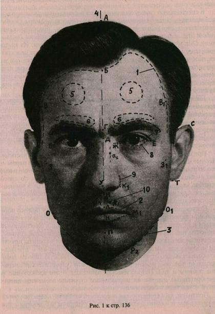 Схема элементов головы, точек,