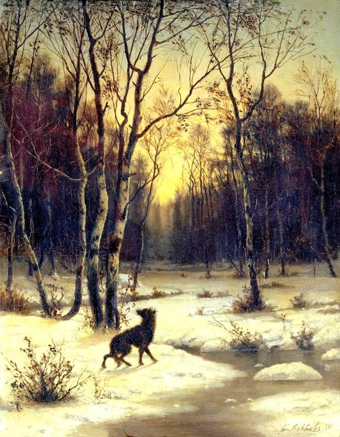 Картинки волков - 0